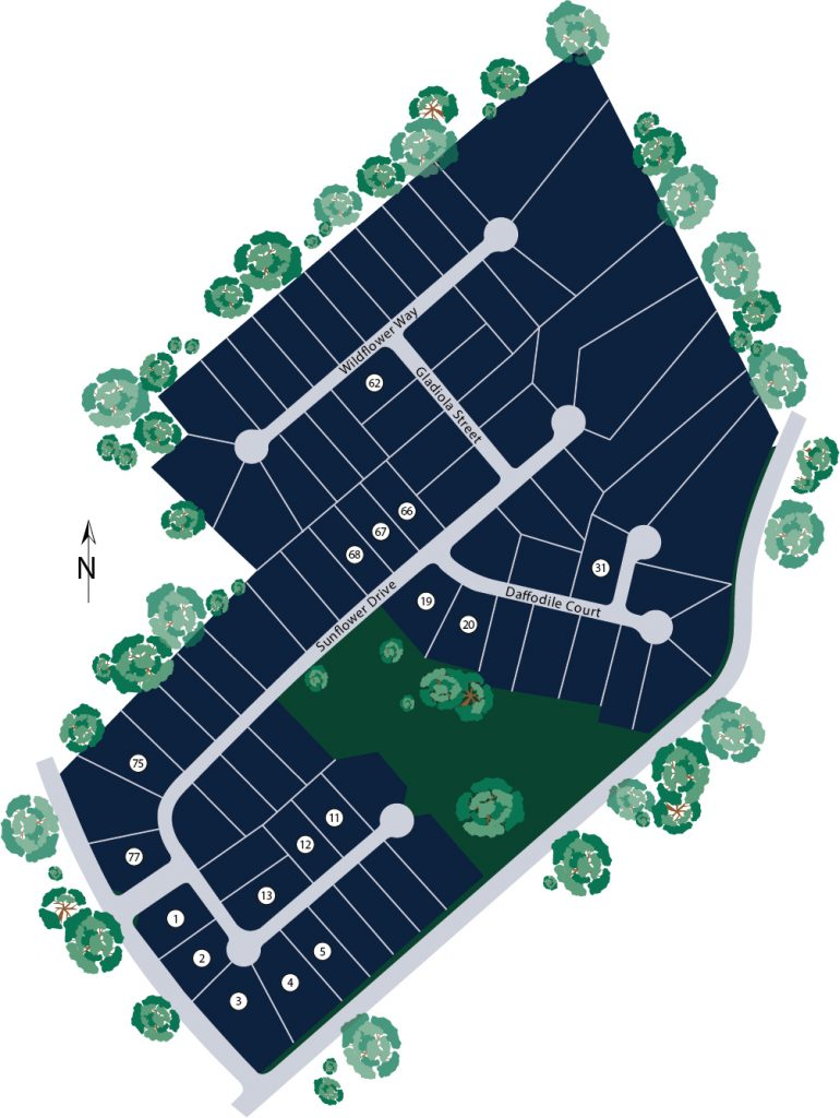Coles Pond Site Map